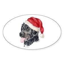 Christmas Stabyhoun Oval Decal