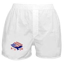 Spirit of 76! USA Patriotic Boxer Shorts