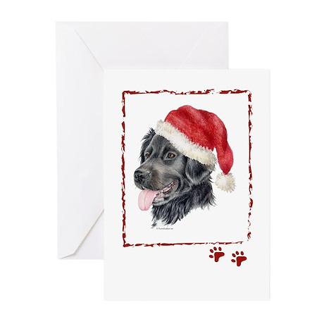Christmas Stabyhoun Greeting Cards (Pk of 20)