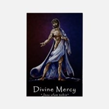 Divine Mercy Rectangle Magnet