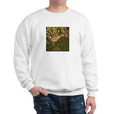 Clapper rail camo - Sweatshirt
