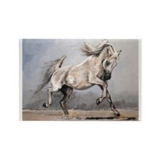 Grey Stallion Rectangle Magnet