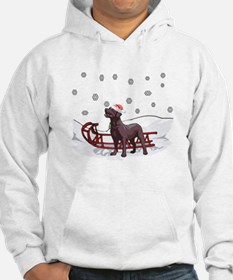 Sledding Chocolate Lab Hoodie