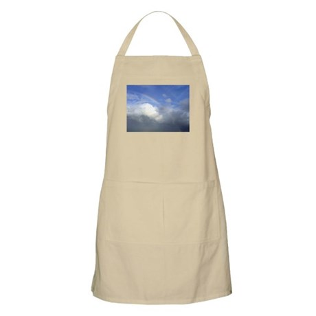 Somewhere Over the Rainbow BBQ Apron