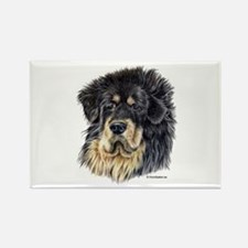 Tibetan Mastiff Rectangle Magnet