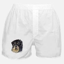 Tibetan Mastiff Boxer Shorts