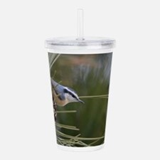 Red Breasted Nuthatch Acrylic Double-wall Tumbler