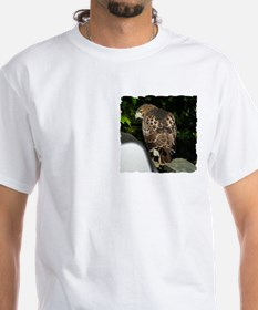 Red-tailed Hawk Shirt