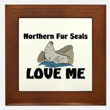 Northern Fur Seals Love Me Framed Tile