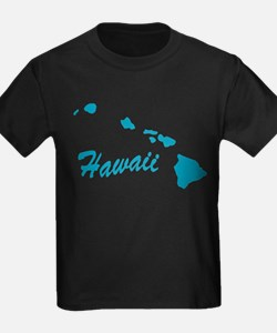 State Hawaii T