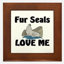 Fur Seals Love Me Framed Tile