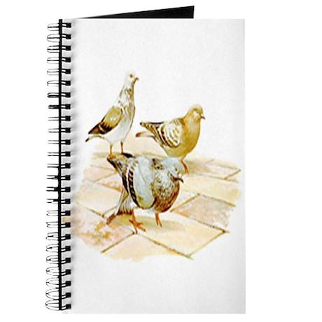 Pigeon Journal