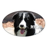 Border collie Stickers