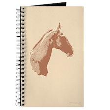 Akhal Teke Horse Journal