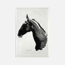 Akhal Teke Horse Rectangle Magnet