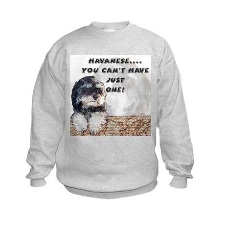 Havanese Just One Kids Sweatshirt