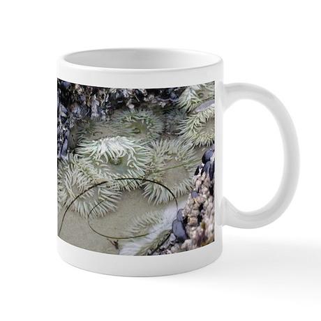 Seacreatures Mug