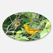 Yellow Warblers Oval Decal