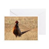Pheasants forever Greeting Cards (20 Pack)