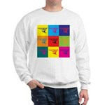 Hang Gliding Pop Art Sweatshirt