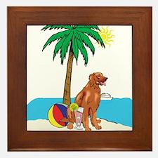 Beach Irish Setter Framed Tile