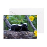 Skunk Greeting Cards