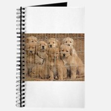 Puppy Prison Gang Journal