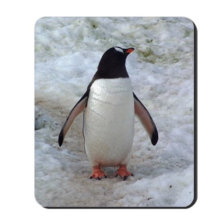 Penguin Pause Mousepad