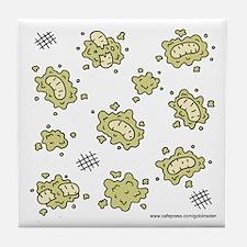 Maggot Coaster