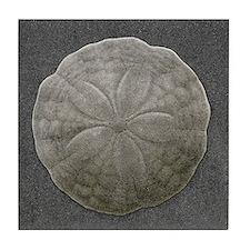 Sand Dollar #4 Tile Coaster