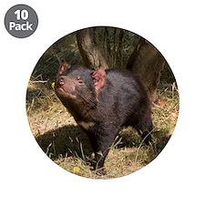 """Tasmanian Devil 3.5"""" Button (10 pack)"""