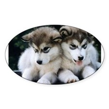 The Huskies Oval Decal