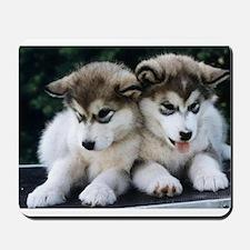 The Huskies Mousepad