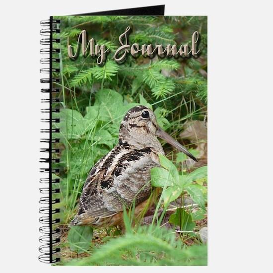 Female Woodcock Journal