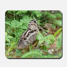 Female Woodcock Mousepad