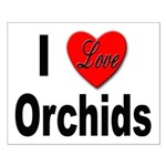 I Love Orchids Small Poster