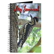 Yellow-bellied Sapsucker Journal