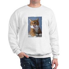 Cool Ginger on Sweatshirt