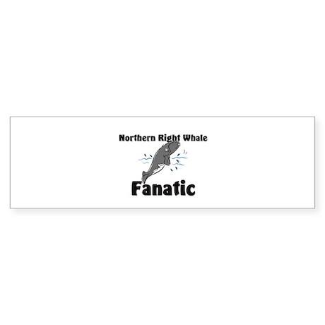 Northern Right Whale Fanatic Bumper Sticker