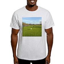 Pangbourne Ash Grey T-Shirt