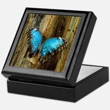 Blue Morpho Butterfly Keepsake Box