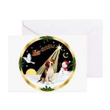 Night Flight/Beagle Greeting Cards (Pk of 10)