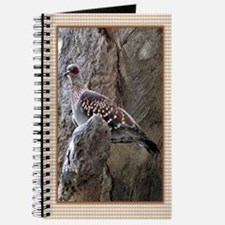 ...Turtle Dove... Journal