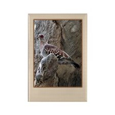 ...Turtle Dove... Rectangle Magnet