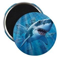 Great White 2 Magnet
