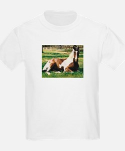 Paint Horse, Pony Lover gifts, Kids T-Shirt