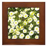 Summer Framed Tile