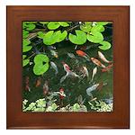 Koi Pond Framed Tile