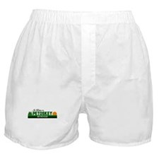 Its Better in Petoskey, Michi Boxer Shorts