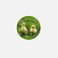 Duckies Mini Button